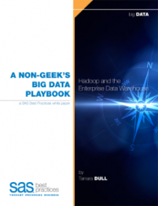 A Non-Geeks' Big Data Playbook; Hadoop and the Enterprise Data Warehouse