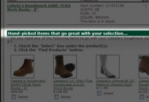 "Cabela's uses SAS to improve it's ""you may also need"" engine for the online customer experience."