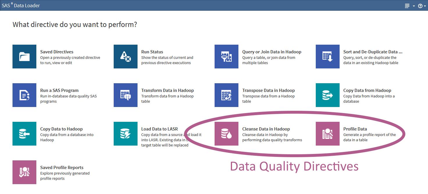 Data Loader Directives-DQ