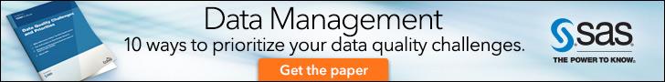 data quality white paper
