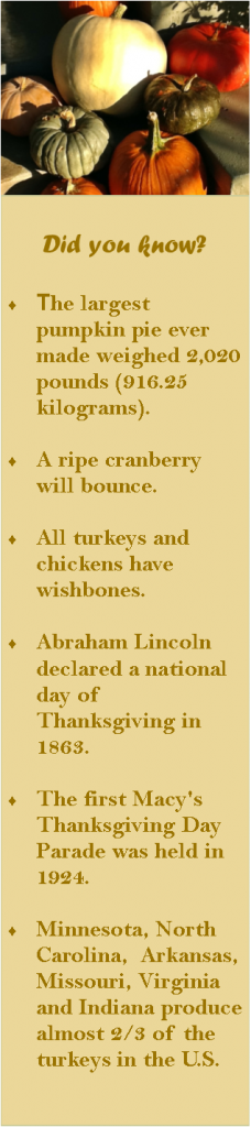 Thanksgiving Did You Know