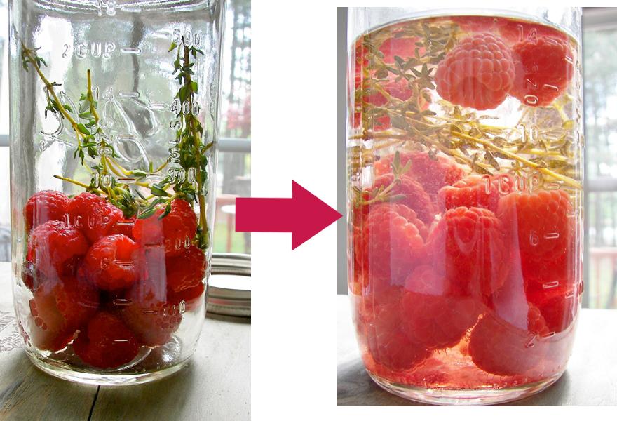 raspberry_thyme_vinegar_infusing_process