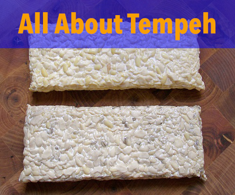 all-about-tempeh