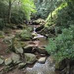 Meditation-Stream