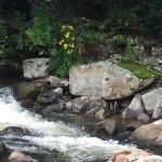 Rough-Rapids