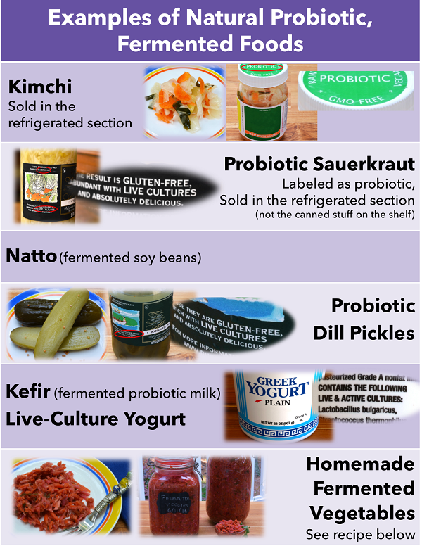 Best Common Natural Sources Of Probiotics