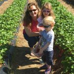 strawberrry picking DL 2016