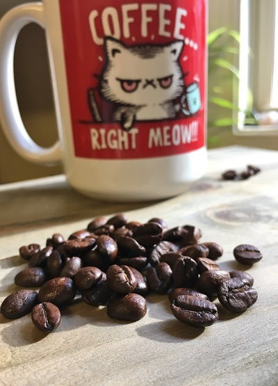 coffee-right-meow-with-beans
