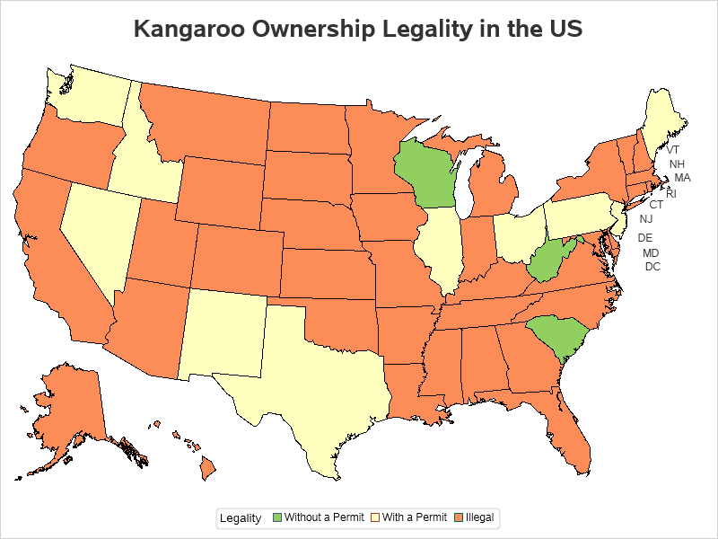 Where can you own a pet kangaroo in the US? - Graphically ...