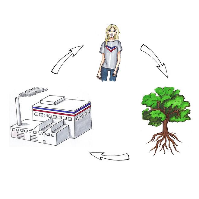 Cradle to Cradle-Konzept: geschlossene Kreisläufe, keine Abfälle