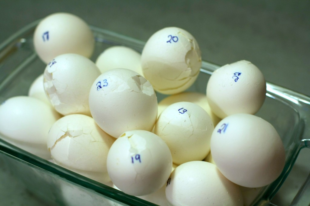What's the best method for getting hard-boiled eggs that are easy to peel and attractive? (Photos by Carroll Co)