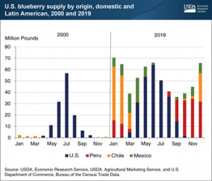 High Value Crops Like Blueberries Are too Often Wasted through the Supply Chain