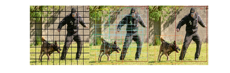 画像内の人間と犬を検出するためにグリッドを使用する際の3つのステップ