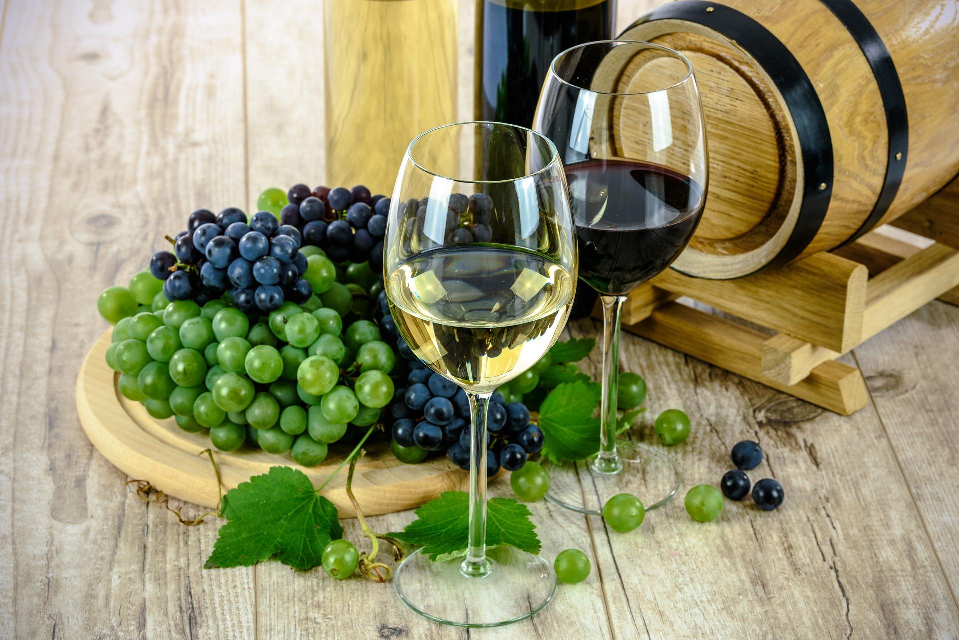 Del viñedo a nuestra mesa: La ruta del vino es impactada por la analítica
