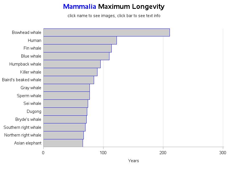 longevity_mammalia