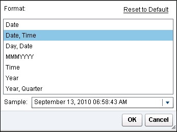 Date Formats in Visual Analytics Designer5