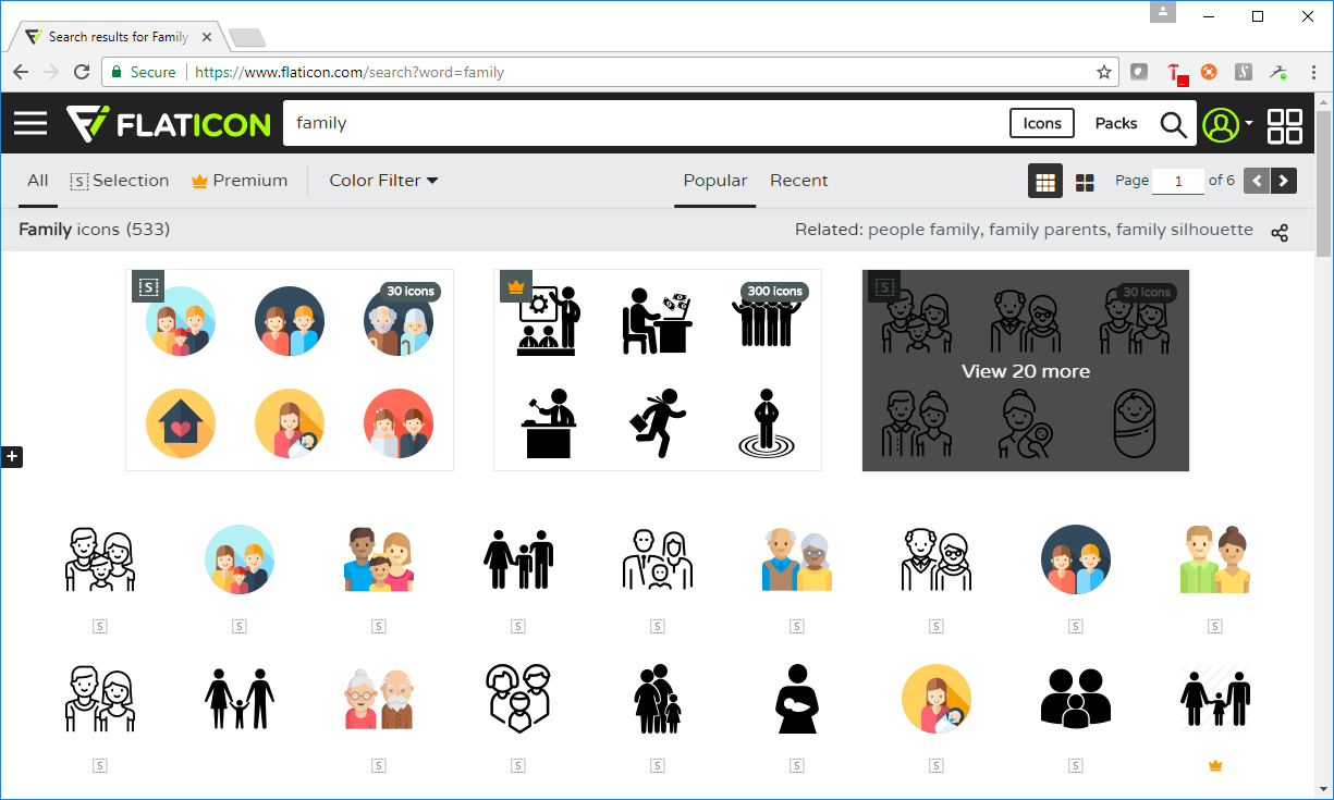 custom icons and map pin icons in SAS® Visual Investigator