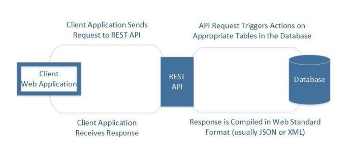 How SAS Viya uses REST APIs to integrate with Python - SAS Users