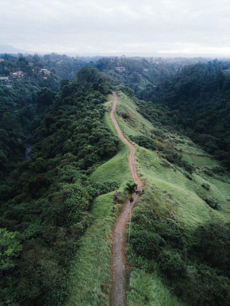 dirt path along a green, lush hillside