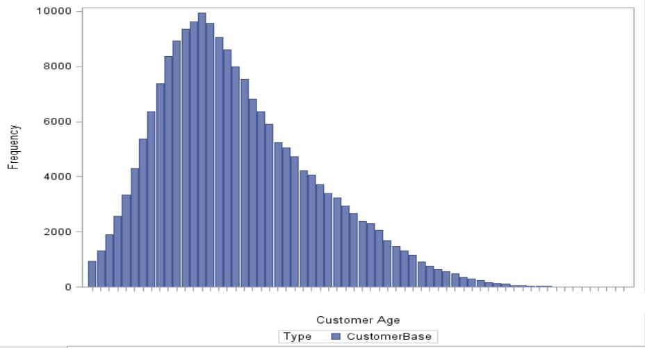 Customer age distribition