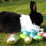 Easter forecasting challenges
